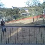 disenio de jardines 17